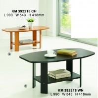 KM392218